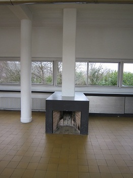 savoye fireplace.jpg